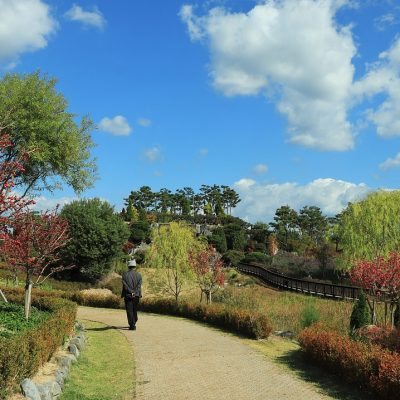 Different Things To Do When You Are Visiting Kent During Autumn 2013
